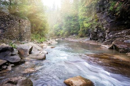 sol: Fluxo do rio da montanha em costas rochosas cobertas de vegetação Imagens