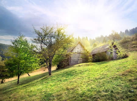 wooden hut: Abandoned wooden hut on green meadow under the sun Stock Photo