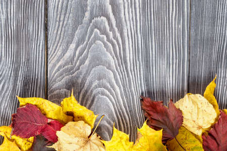 Background with autumn leaves on the wooden boards