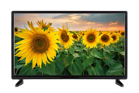 Flat black TV with  picture of  field of sunflowers