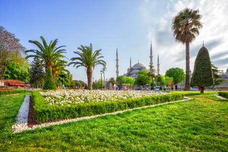 Lawn in front of Sultan Ahmed or Blue Mosque in Istanbul, Turkey Archivio Fotografico