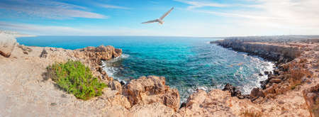 Cove with azure water at Cape Cavo Greco and seagull in sky
