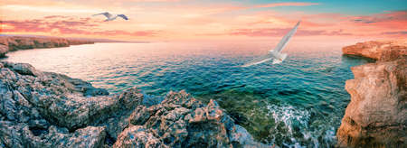 Lagoon with blue water and seagull in foreground. Dawn. Cape Akamas. Aphrodites trail. Famous tourist place. Mediterranean Sea. Panorama. Cyprus