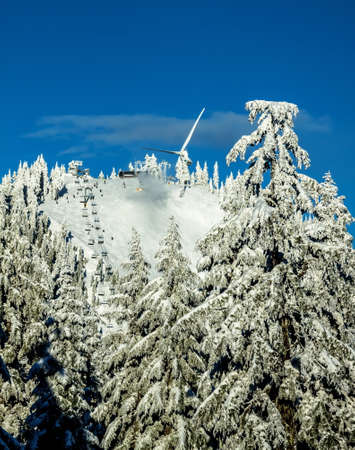 Ski slopes with ski lifts in the snowy woods on Grouse Mountain Vancouver  photo
