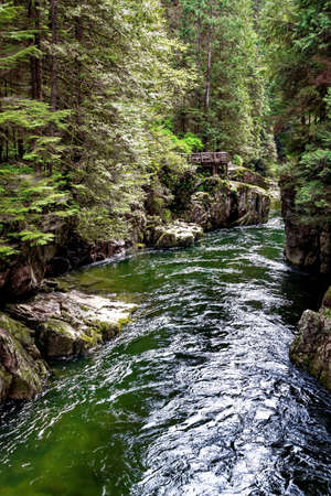 regional: Capilano Regional Park, Capilano River Canyon