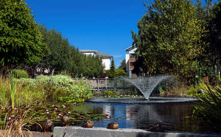 Residential area in a picturesque location near a pond with a fountain in the city of Richmond