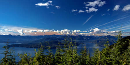 View at Strait of Georgia and Bowen Island from Mountain Cypress. Strait of Georgia and Bowen   on the background of snow-capped mountains and blue cloudy sky. young conifer trees in the foreground