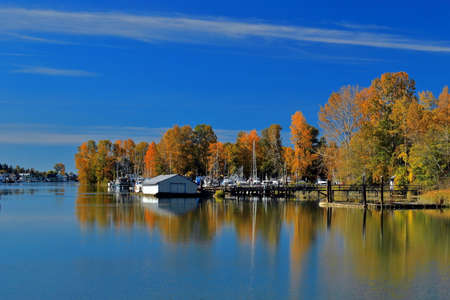 Autumn time, Marina near the riverbank overgrown with yellowed trees, parking of boats and yachts, next to Ladner City against the blue sky Stok Fotoğraf - 130041752
