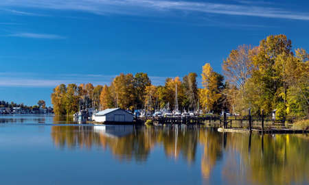 Autumn time, Marina near the riverbank overgrown with yellowed trees, parking of boats and yachts, next to Ladner City against the blue sky Stok Fotoğraf - 130041753