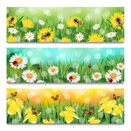 Spring Banners Illustration