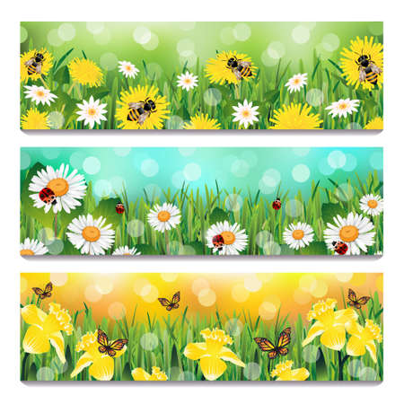 grass close up: Spring Banners Illustration