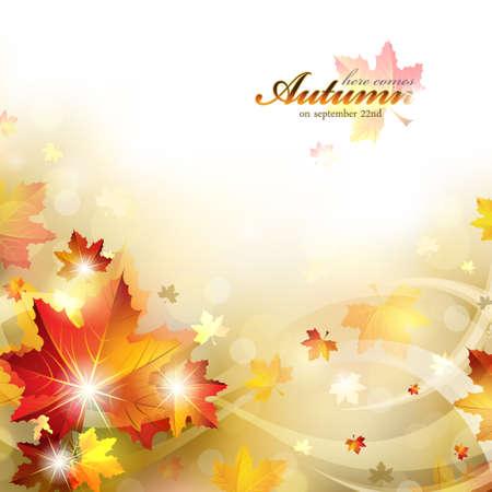 autumn background: Autumn Background with Foliage