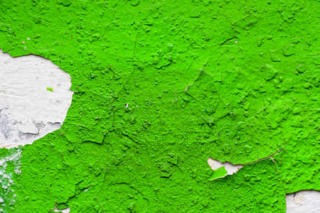 Texture of a paint on the wall. Very gentle and eye-pleasing background.