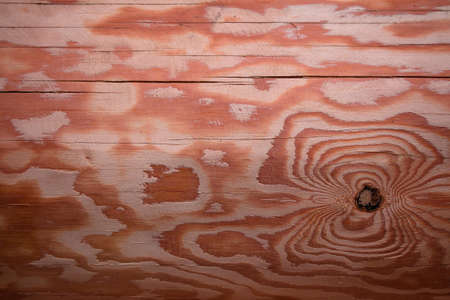 A beautiful texture of a planed log made of pine wood, which is used to build a structure.