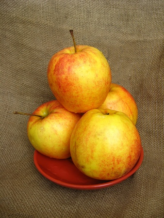 nice apples on the plate photo