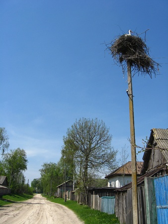 Nest of storks in village on a background of the blue sky photo