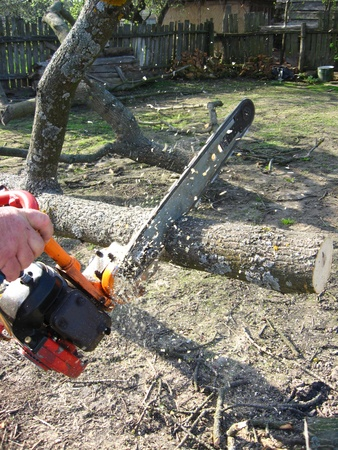 The man sawing the firewoods by petrol saw Stock Photo - 13593877