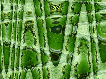 The image of unusual green background and texture photo
