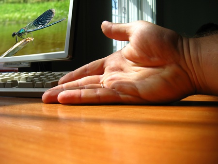 The hand of the person pointing the monitor of a computer photo