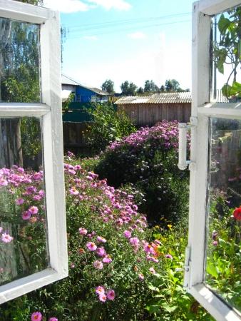 The open window in a summer garden photo
