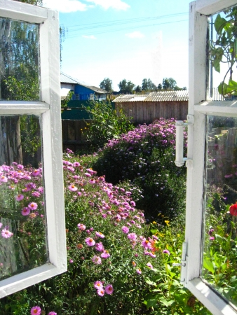 hot pink: The open window in a summer garden Stock Photo