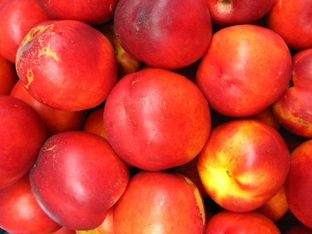 the image of a lot of red nectarines photo