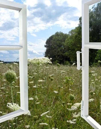 the image of opened window to the summer field