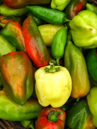poignant: the image of a lot of sweet bulgarian ripe peppers Stock Photo