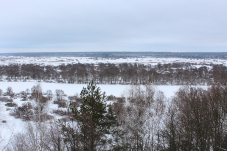 Winter landscape with a view on the river and a forest photo