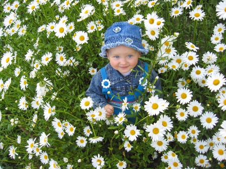 the image of little beautiful child in the flower-bed of camomiles photo