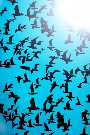 Set van zwarte silhouetten van vogels op een blauwe achtergrond