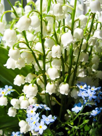 Beautiful bouquet of lilies of the valley and blue flowers