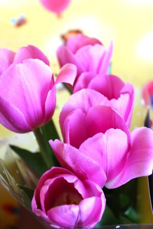 the image of bouquet from tulips for a holiday on March, 8th photo