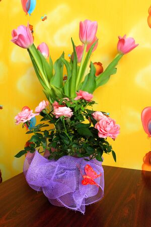 image of bouquet from tulips for a holiday on March, 8th photo