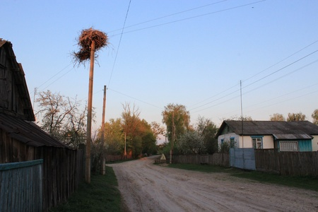 Nest of storks in village on a background of the blue sky Stock Photo