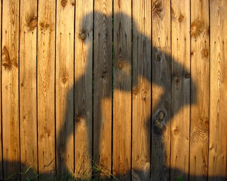 shadow of amicable boy and girl which embrace on wooden surface