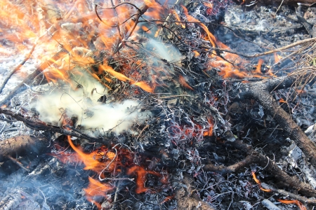 ignited: body of flame inflaming in the field