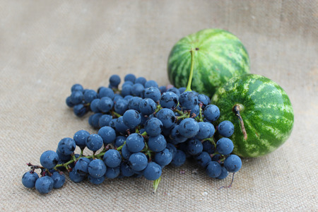 pappy: still life from fruits of two watermelons and grape on the gray background