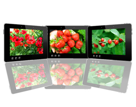 three black tablets with motley pictures with different plants photo