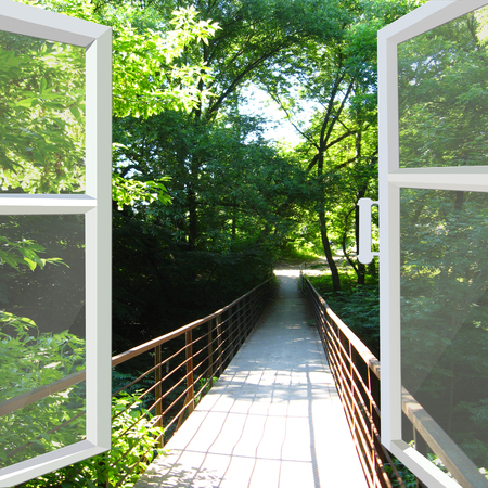 hand rail: opened window to the bridge across ravine in the park