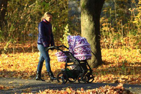 perambulator: woman with baby in perambulator walking in the autumn park Stock Photo