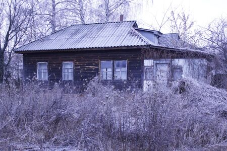 Old rural house covered by hoarfrost and big brushwood near it photo