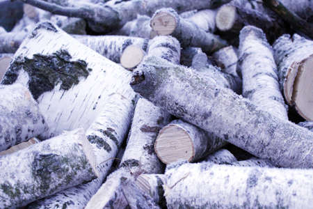 Fire wood from birch covered by hoar-frost photo