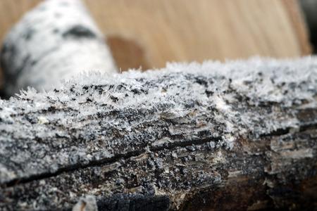 under fire: madera de fuego bajo la escarcha prepara para el invierno