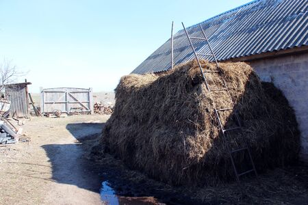 big heap of the dung besides the shed Stock Photo