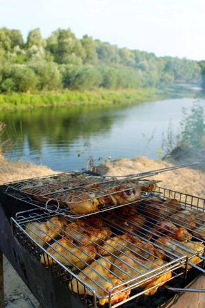appetizing: appetizing barbecue from chicken s meat cooked in the nature