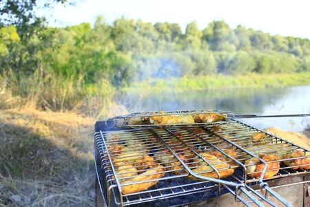 appetizing: appetizing barbecue from hens meat cooked in the nature Stockfoto