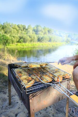 appetizing: appetizing barbecue from hens meat cooked in the nature Stock Photo