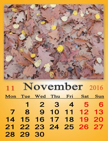 numerical: calendar for November 2016 with the ribbon of yellow leaves Stock Photo