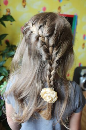 hairdress: young girl with nice fashionable plaits and hairs